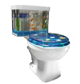 Toilet Aquarium