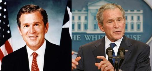 Bush Before & After